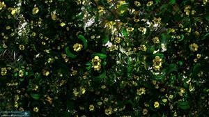 Spring Forward by GrahamSym