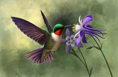 Ruby-throated Hummingbird by Nachiii