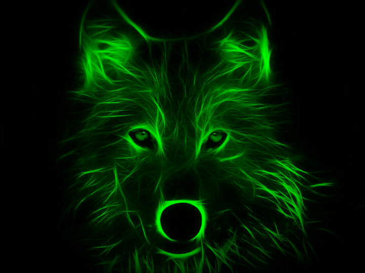 Neon Wolf (night vision) by L0n3lyW0lf1996 on DeviantArt