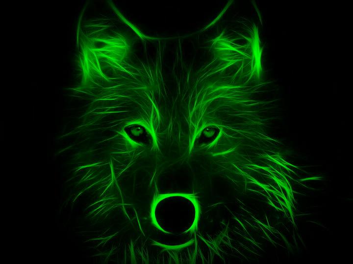 Neon Wolf (night vision) by L0n3lyW0lf1996 on DeviantArt