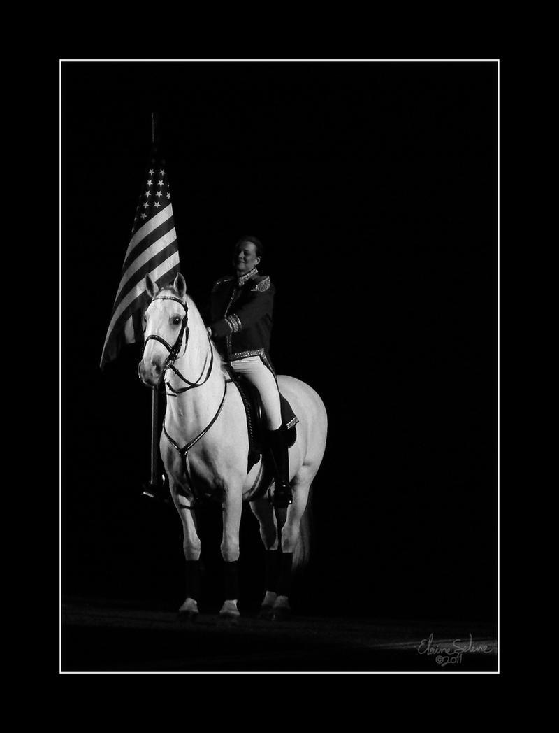 Flag Salute by ElaineSelene