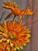 Plastic flowers by kazikox