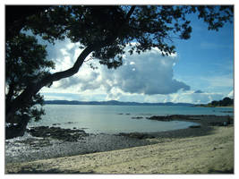 'Omana Regional Park' Beach by runescapeandmaple