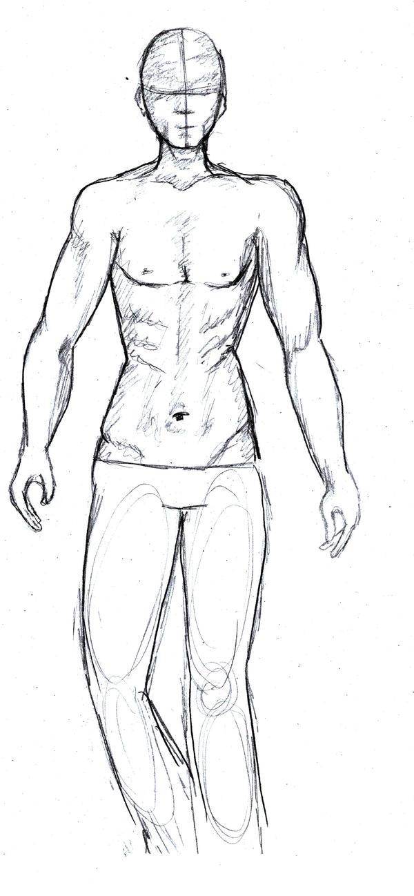 Male Body Sketch By Shellybunny On DeviantArt