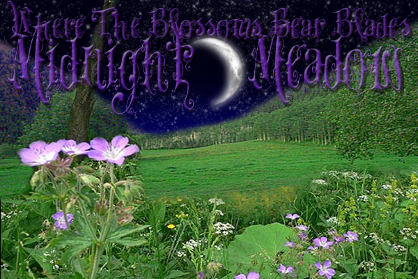 Midnight meadow by crystalvixon on deviantart for Meadowlark load board