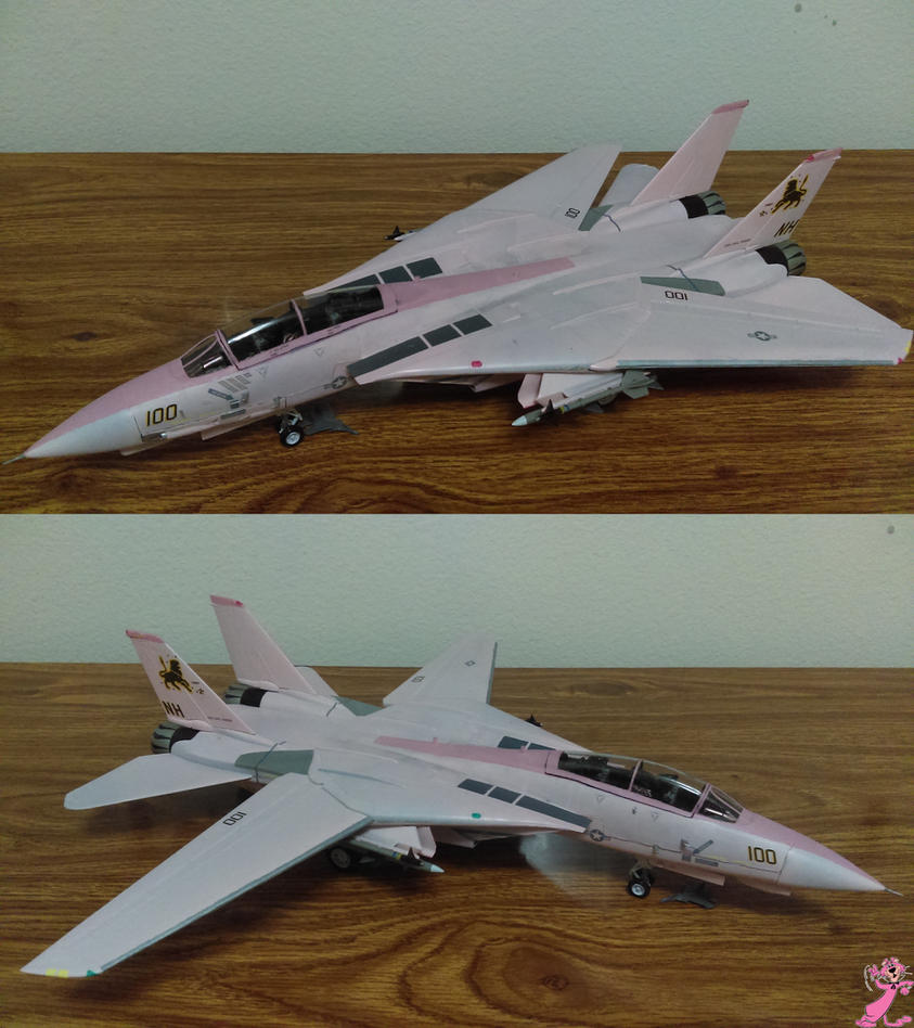 F-14D ''SnagglePuss'' by Kiba928