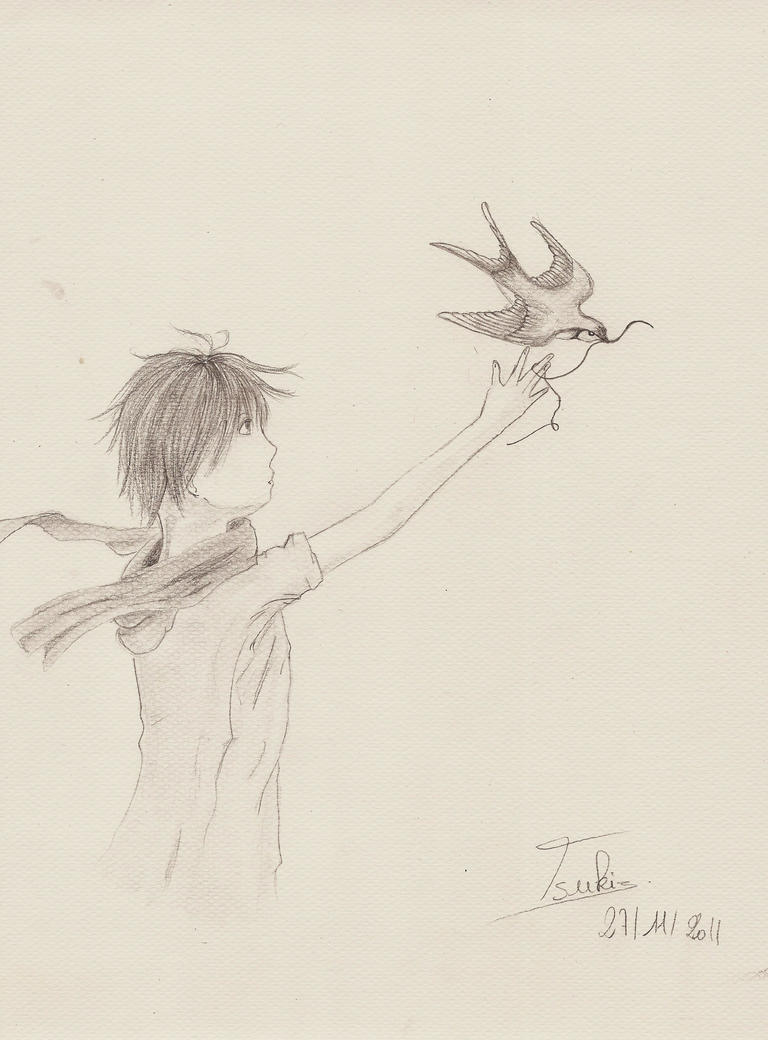 Galerie de Tsuki ! _the_boy_and_the_swallow__by_tsuky76710-d4hkml1