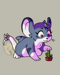 Zag With Cactus