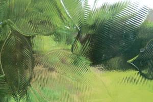 Vendian window by Sinande