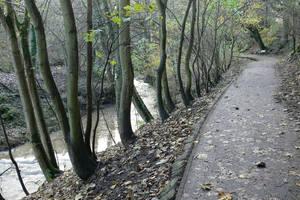 Grey Road by Sinande