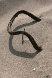 Glyph II by Sinande