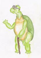 Mr Tortoise by Sinande