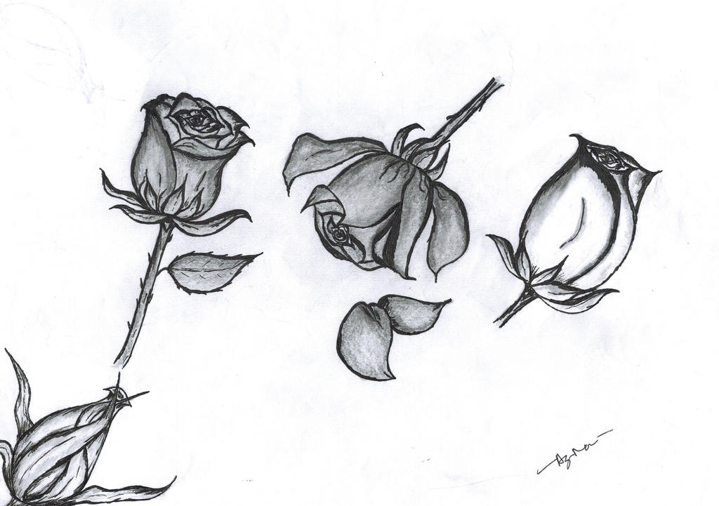 Emo roses by dealterart on deviantart - Emo rose pictures ...