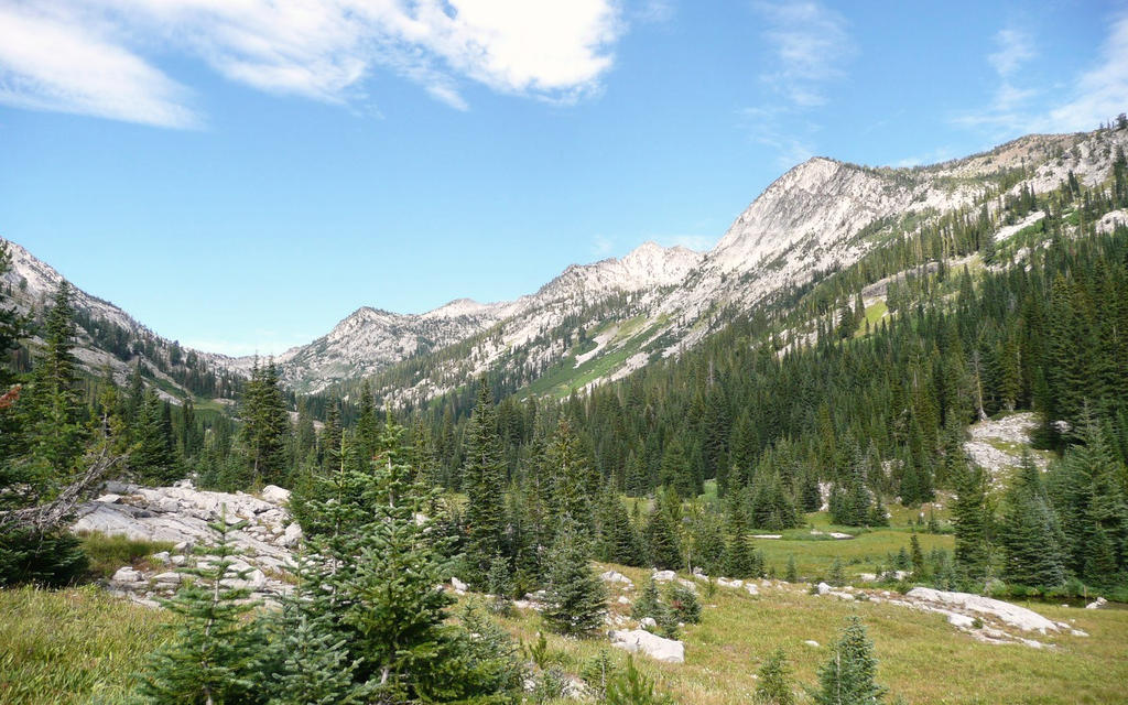 mountain meadow by Beausoliel