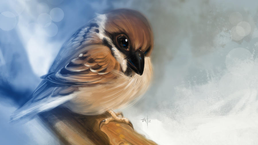 Sparrow by popChar