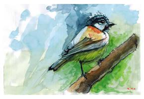 Little Bird by popChar