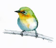 Bird Sketch II