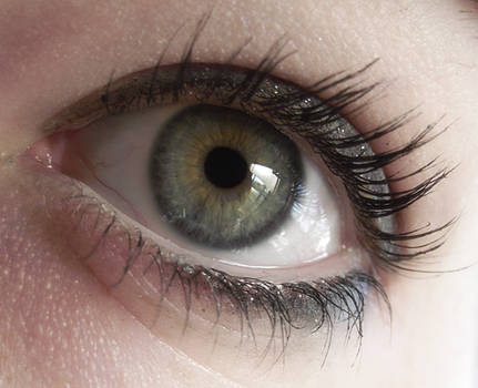 Eye Stock 44