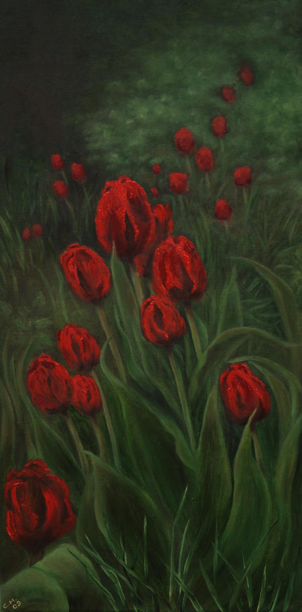 Tulips by VivalaVida