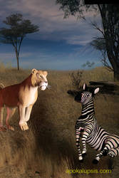 Zebra and Lion, Revisited
