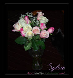 Sylvie and the Roses by darkligress