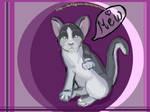 Kitten For Taya
