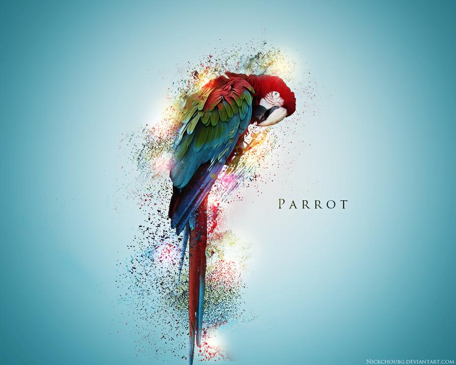 Parrot Wallpaper by NickchouBG
