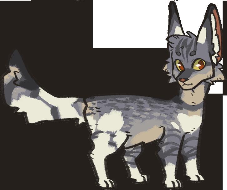 Sagecreek by raccoonhearted