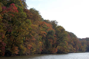 Autumn Colors - East North Central United States