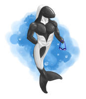 Commerson's Dolphin wants to take you for a swim.