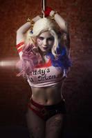 Harley Quinn- Hi Puddin! Miss me? by Anastasya01