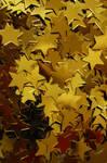 Stars by fotojenny