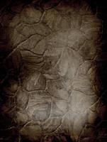 Grunge texture by fotojenny
