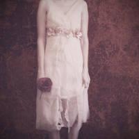 Single rose vintage by fotojenny