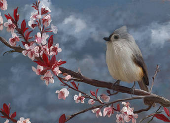 Titmouse by Bumblewales