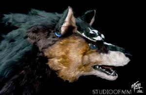 Wolf Link Head