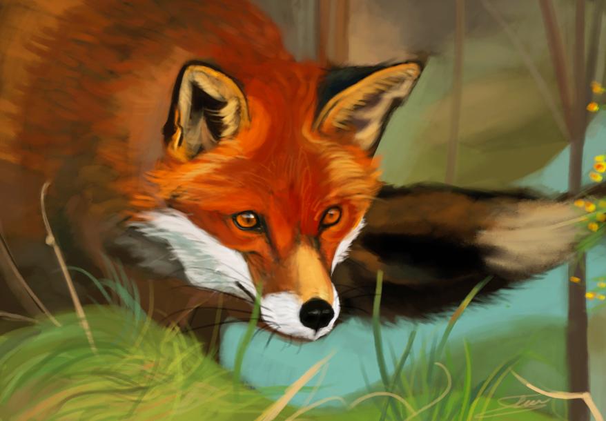 foxy by Shimda