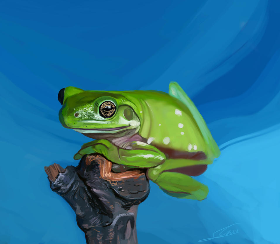 gb frog by Shimda