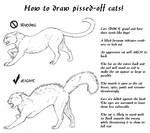 -scrap- pissed-off cat minitut