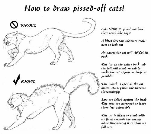 -scrap- pissed-off cat minitut by Tacimur