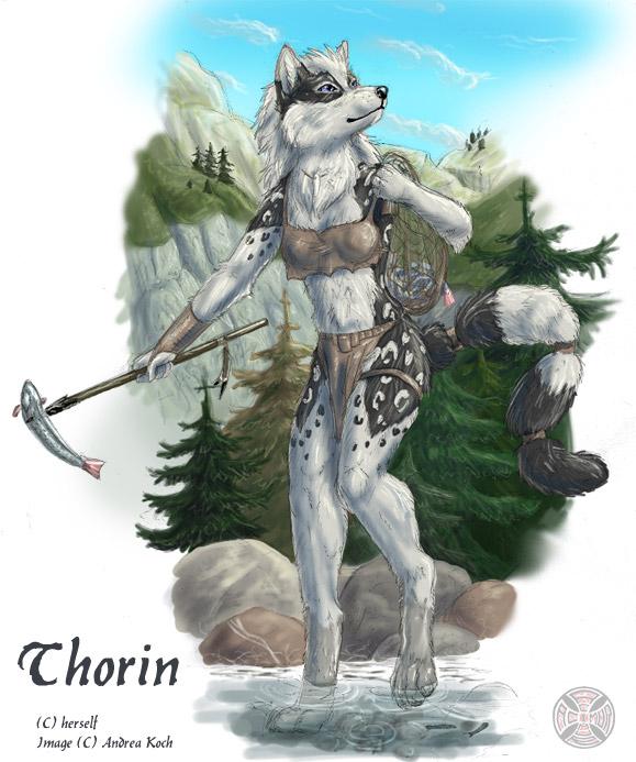 Thorin Anthro