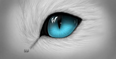 Cat eye drawing