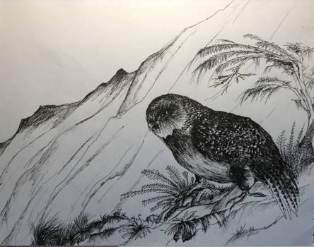 The Last of the Kakapos