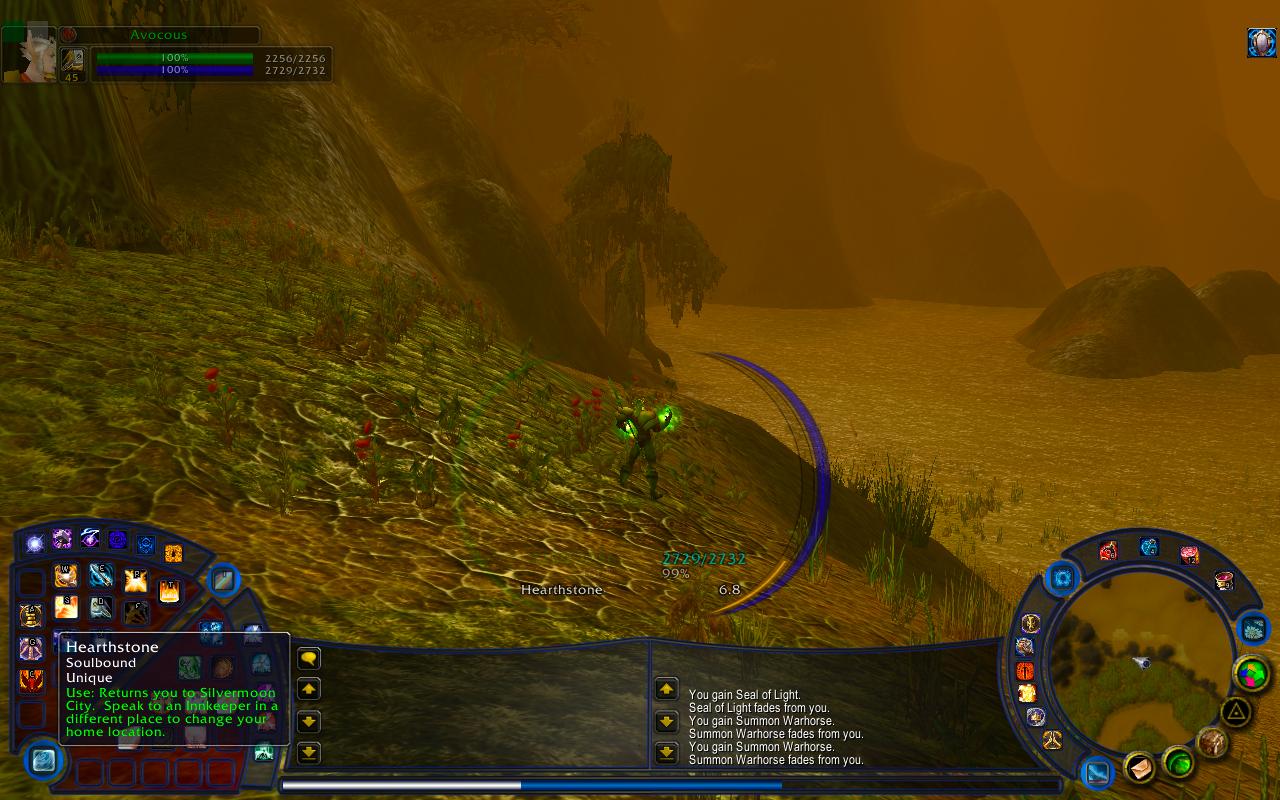 world of warcraft interface:
