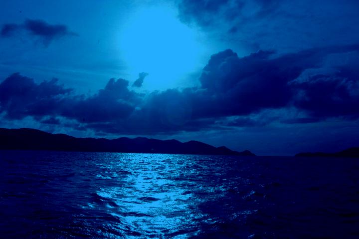 Catalott On The Road: Midnight Moonlight Madness