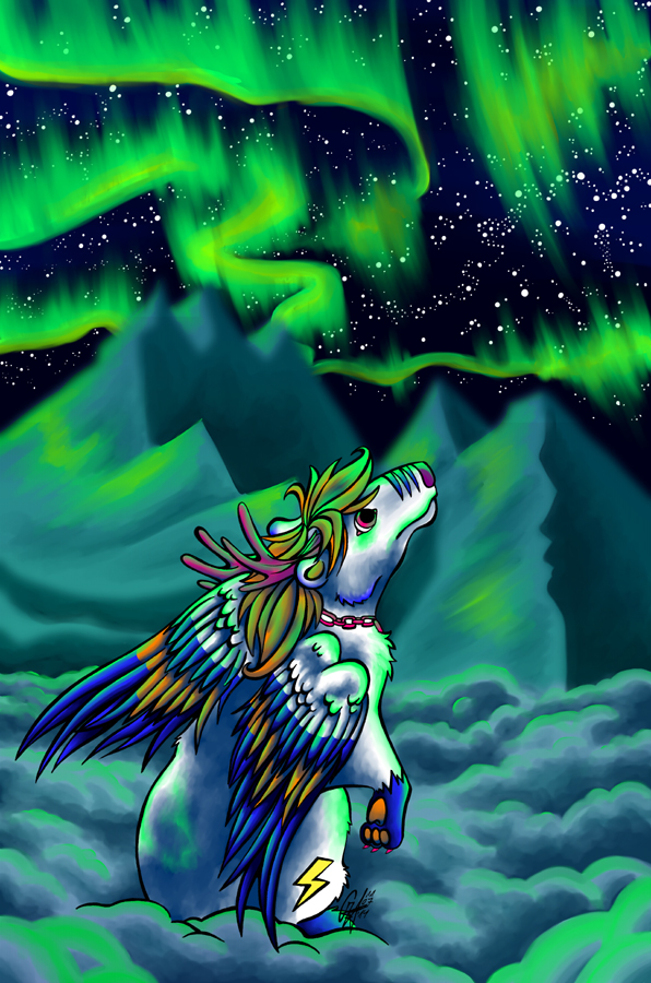 Polar Lights by Contugeo