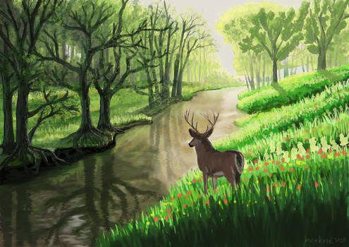 Nature Scene 2020 Hd