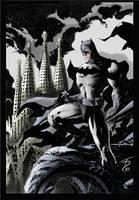Batman coloured by Trance-Sephigoth