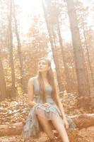 Far Away in the Woods 2 by xynthian