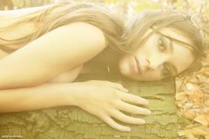 Far Away in the Woods 6 by xynthian